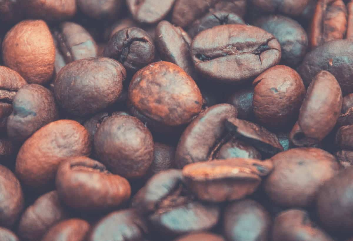 A close up shot of whole coffee beans