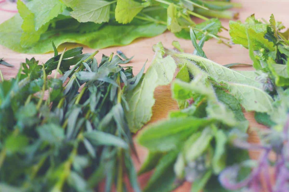 overhead shot of a selection of herbs
